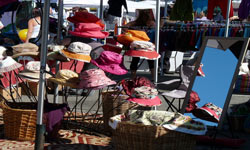 Visit 							the Nelson or Motueka market